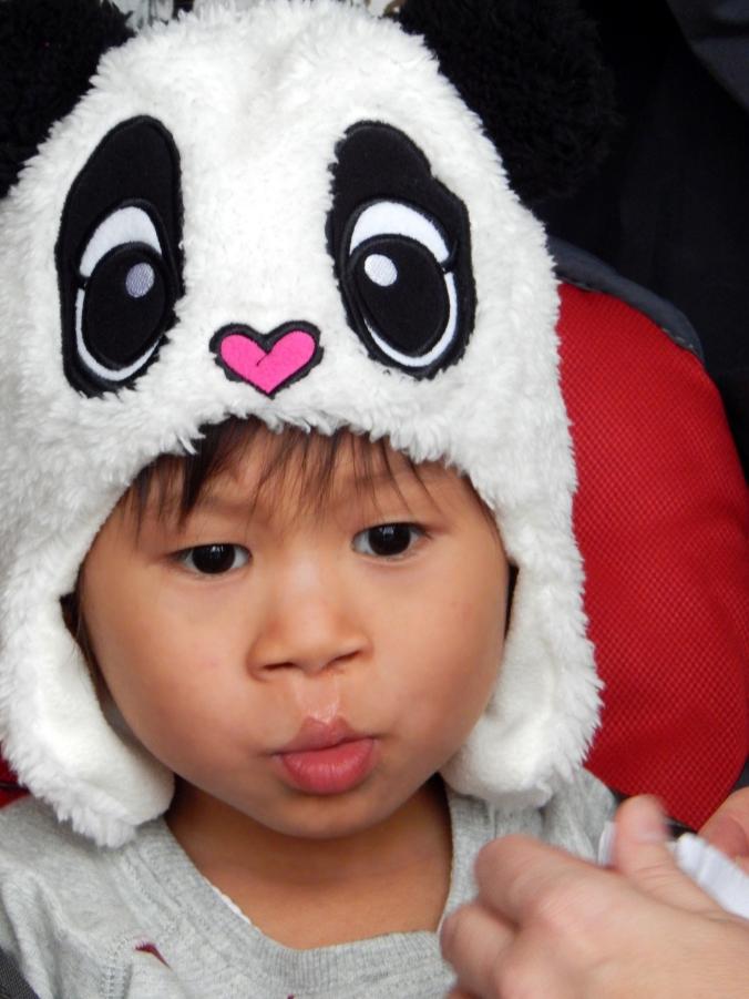 2-panda hat